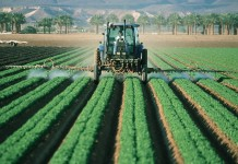 pesticides-ou-manger-bio