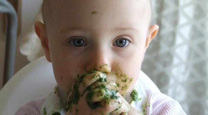 petit pot bébé bio