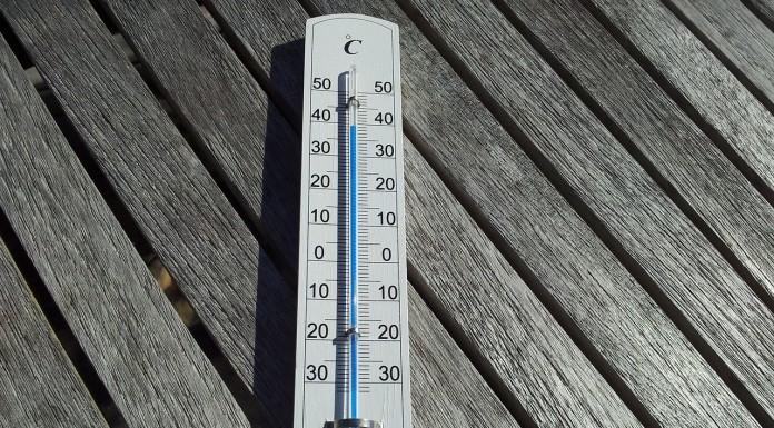 2015 année très chaude