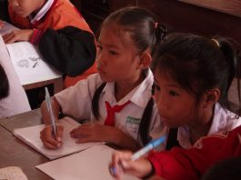 enseignement développement durable