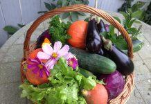 manger bio et local
