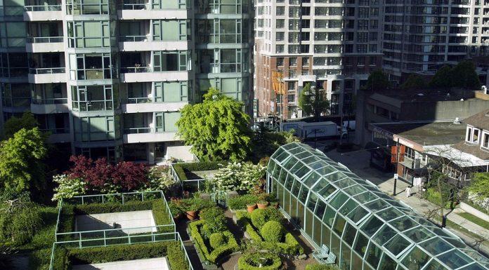 Végétalisation des villes