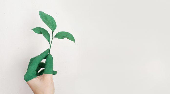 les conséquences de notre mode de vie sur l'environnement