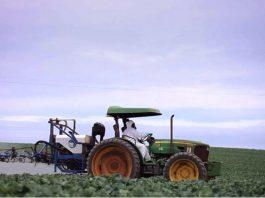 agriculture conventionnelle versus bio