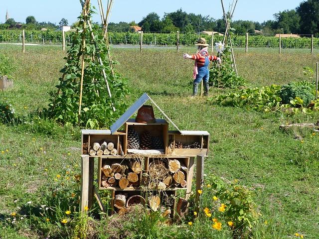 permaculture dans les quartiers entre voisins