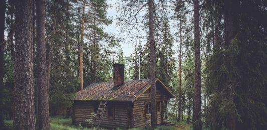 Une cabane écologique