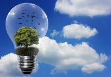 énergie verte ou nucléaire