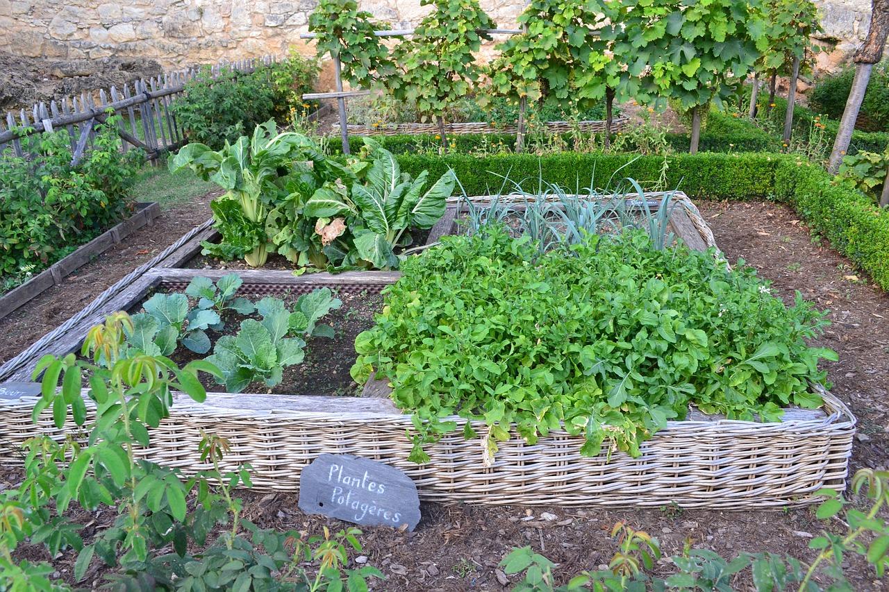 100 Génial Conseils Planter De L Herbe Dans Son Jardin