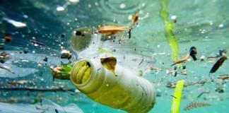 pollution ocean
