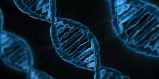 la thérapie génique