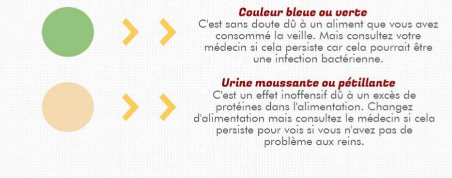 infographie urine couleurs inquietantes