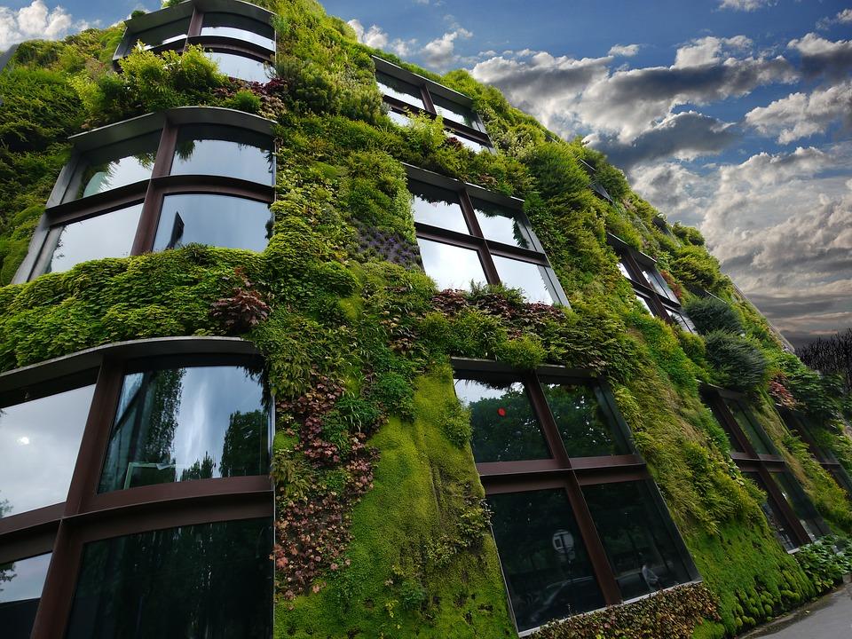 bâtiment végétal