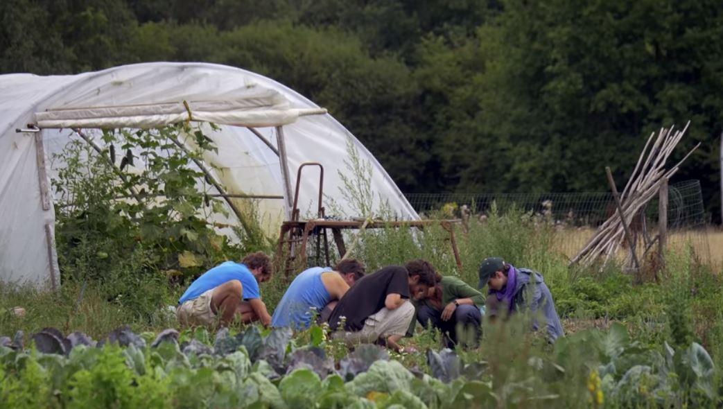 la ZAD un projet agricole