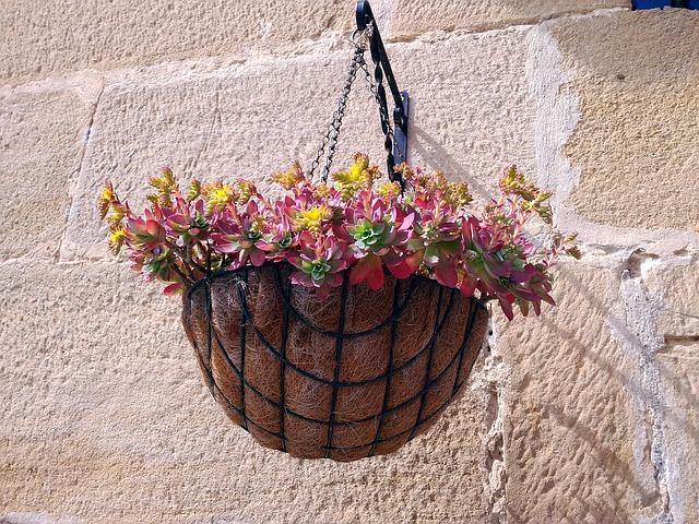 pot de fleurs fibre de coco