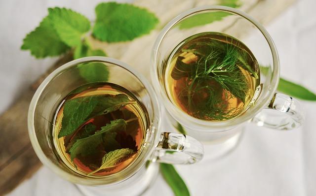plantes médicinales herboriste métier