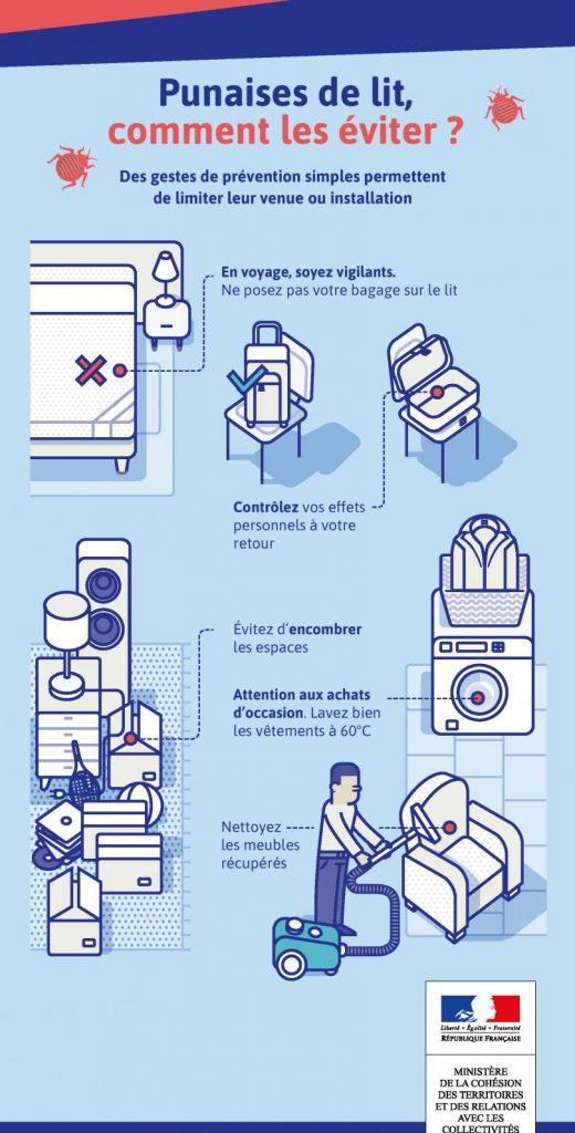 comment se débarrasser des punaises de lit naturellement