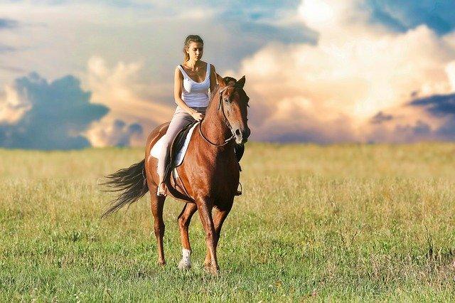 promenade à cheval en écovillage