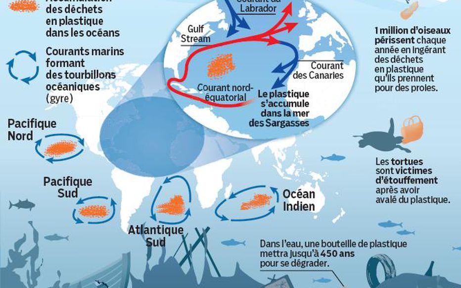 le 7ème continent, infographie Le Parisien
