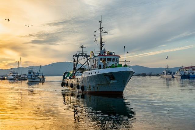 pression de la pêche sur les océans