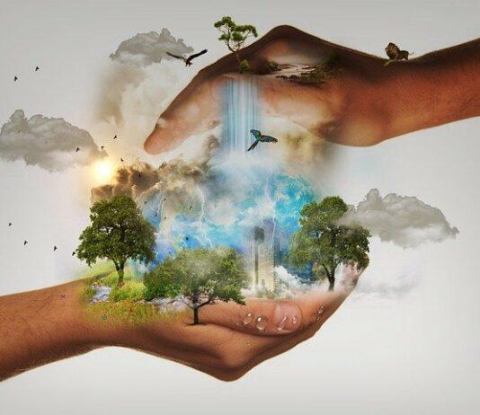 intelligence artificielle au secours de la planète