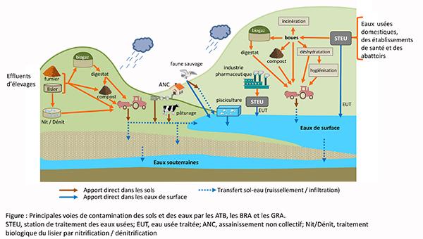 antibiorésistance et environnement