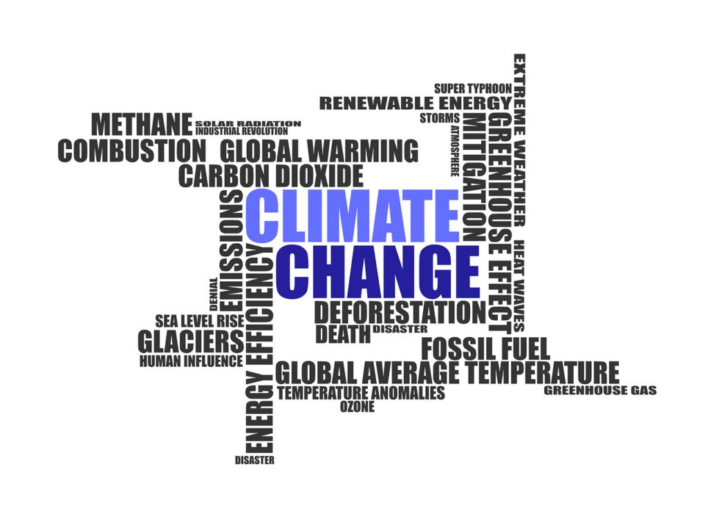 changement climatique et transition écologique